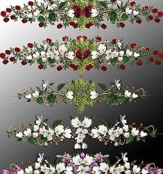 квіткові прираси