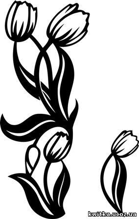 Графічні візерунки, орнаменти з квітами - Візерунки, орнаменти png ...